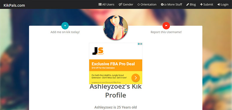 Kik Pals Profile page