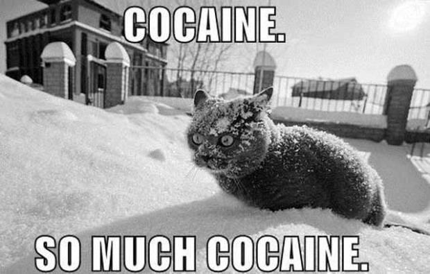 cocaine in miami