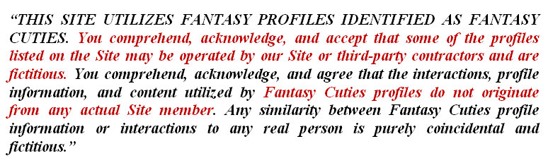 fake profile terms of service